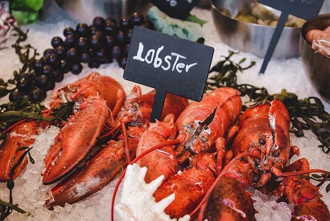 hải sản, tôm hùm, thực phẩm không nên cho trẻ dưới 1 tuổi ăn