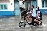 học sinh vi phạm luật giao thông