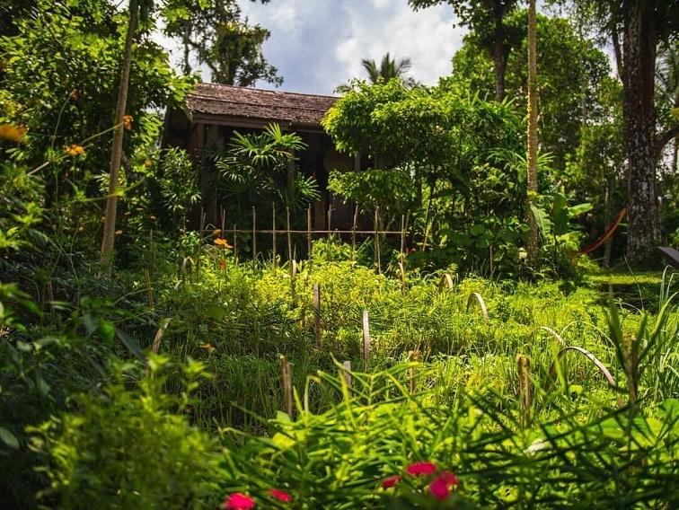 Khu vườn sinh thái, nông nghiệp bền vững, thực phẩm sạch