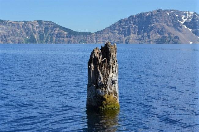 The Old Man of the Lake, khúc gỗ kỳ lạ, Khúc gỗ bí ẩn, kỳ lạ