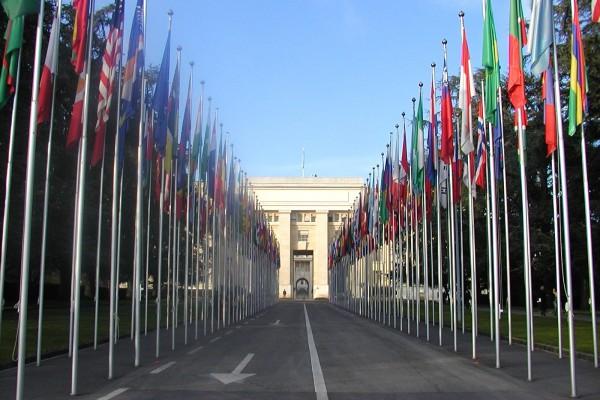 Liên Hợp Quốc, Vi phạm nhân quyền