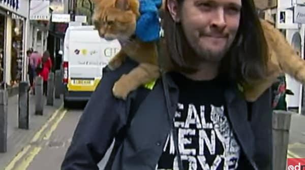 James - người đàn ông vô gia cư và chú mèo vàng của mình