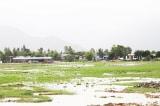 Dự án Trung tâm hành chính tỉnh Khánh Hòa, Khánh Hòa