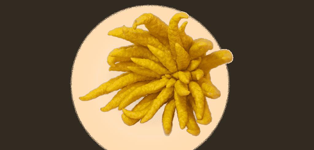 trái cây trong mâm ngũ quả