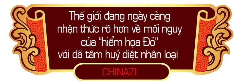 Chinazi-sapo-5