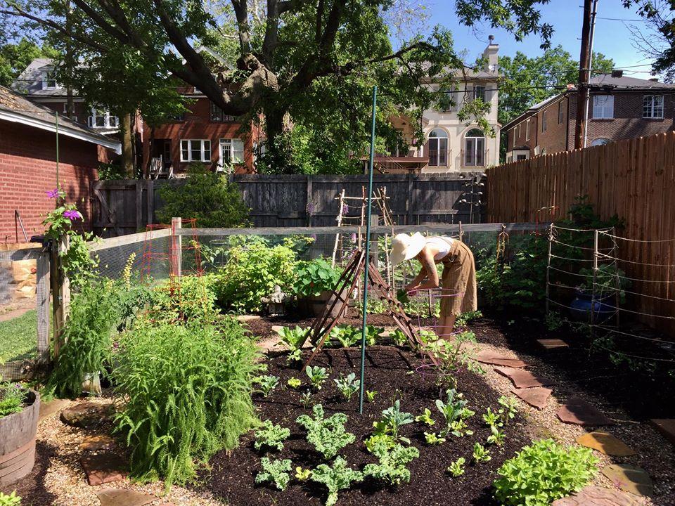Làm vườn, khu vườn