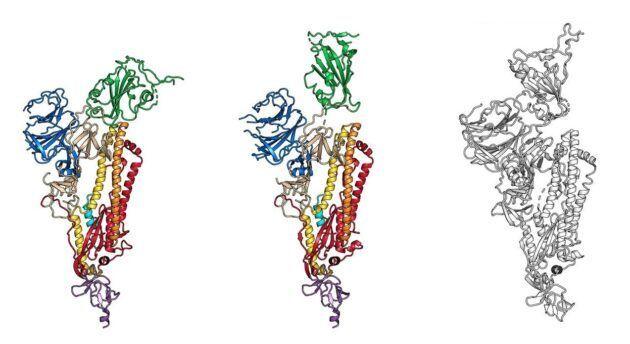 viêm phổi Vũ Hán, Virus COVID-19, robot nano sát thủ