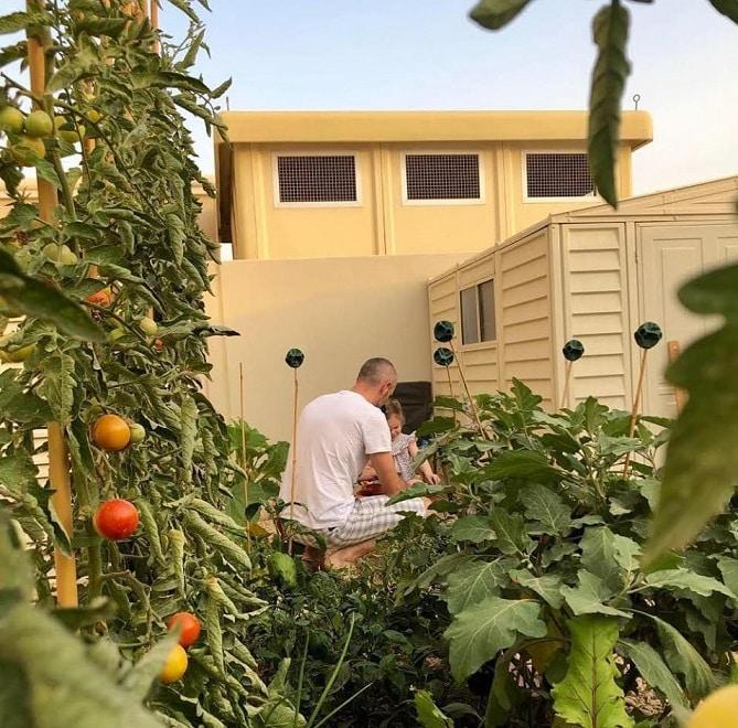 làm vườn, trồng rau, cha con, dạy con kỹ năng sống