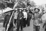 Chuyện phát triển nông nghiệp sau 75 - Trích hồi ký Nguyễn Hiến Lê