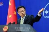 Trung Quốc: WHO nên điều tra nguồn gốc virus corona tại các quốc gia khác