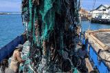 dọn rác đáy biển