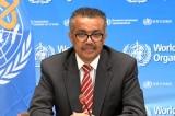"""Tổng GĐ WHO: """"Tôi rất thất vọng vì Trung Quốc không cho nhóm điều tra COVID-19 nhập cảnh"""""""