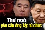 Giáo sư Trung Quốc gửi thư giục ông Tập Cận Bình từ chức