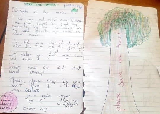 Bé gái 8 tuổi viết thư cho hội đồng địa phương vì một cây xanh bị chặt