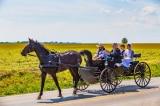 16 sự thật về lối sống tách biệt với thế giới hiện đại của người Amish