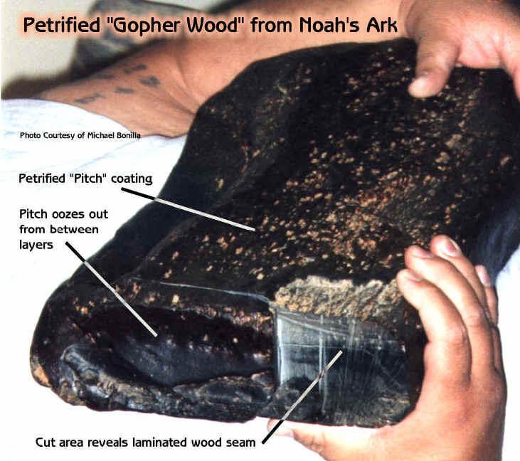 Phải: Bên trong mẫu gỗ dán cực kỳ cổ xưa đã hóa thạch này, người ta tìm thấy dấu vết của những cây đinh sắt.