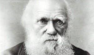 Charles-Darwin (Ảnh: Getty Images)