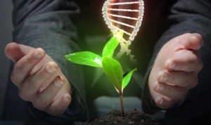 Tính phức tạp của thông tin của DNA chứng tỏ tiến hóa là điều bất khả. (Ảnh: Shutterstock)