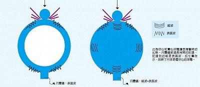 Trái: sóng âm truyền trong một kết cấu rỗng. Phải: sóng truyền trong khối đặc (Ảnh: Internet)