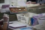 Wisconsin ra lệnh kiểm phiếu lại hai hạt theo yêu cầu của chiến dịch Trump