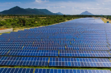 5 dự án điện mặt trời bị phạt và truy thu thuế hơn 210 tỷ đồng
