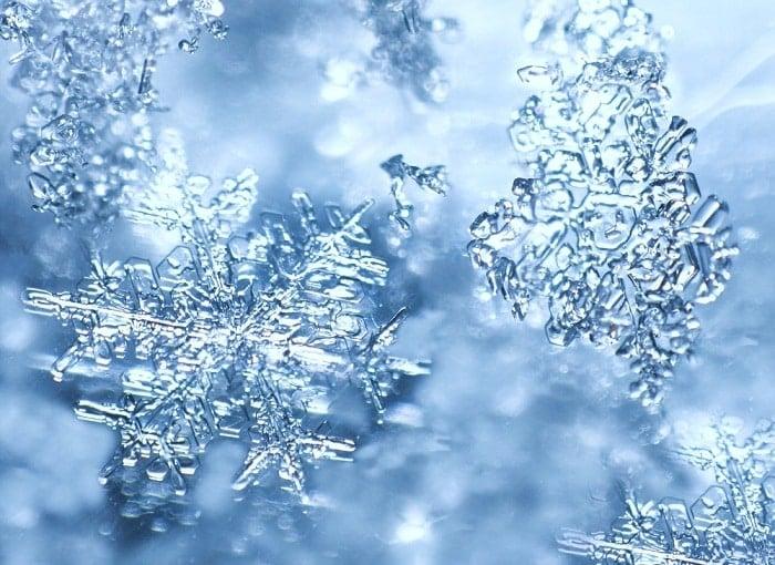 hoa tuyết, bông tuyết, tuyết rơi