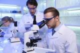 Tài liệu: Mỹ đã chi hơn 800.000 USD cho phòng thí nghiệm Vũ Hán để nghiên cứu dơi