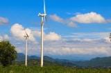 Việt Nam: Điện gió sẽ bị cắt giảm công suất ở mức cao vì thừa điện