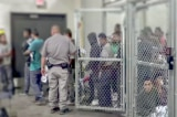 Mark Morgan: 30.000 người nhập cư bất hợp pháp đã được thả vào Mỹ kể từ tháng 1