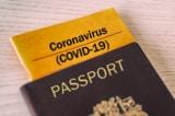 """Quốc hội Pháp thông qua """"luật hộ chiếu vắc-xin COVID-19"""" bất chấp có nhiều phản đối"""