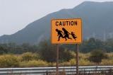 Chính quyền Biden đã phóng thích ít nhất 800 người vượt biên vào Mỹ chỉ trong 4 ngày