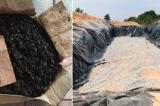 600 tấn hải sản 'mòn mỏi' chờ tiêu hủy sau 5 năm thảmhọa môi trường Formosa