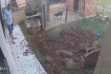 Người đàn ông làm nổ tung cả vườn nhà chỉ vì… diệt gián