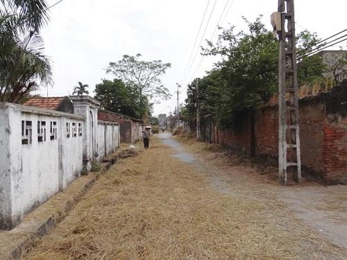 Làng Cổ Am: Đất học - Quê hương Trạng Trình
