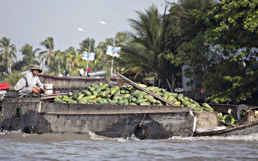 Chi phí logistics chiếm đến 30% giá thành nông sản ĐBSCL