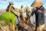 Dịch viêm phổi Vũ Hán bùng phát hai tháng, hơn 9 triệu lao động bị mất việc, cắt việc