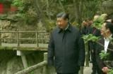 Quan chức Trung Quốc thúc đẩy bảo vệ long mạch núi Tần Lĩnh