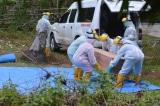 Cập nhật COVID-19 tại ASEAN đến hết 17/5: 7 quốc gia có ca tử vong mới