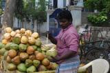 Người bạn Ấn bán dừa