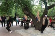 Trung Quốc: Treo mình lên cây để chữa bệnh? (Video)