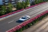 Hoa hồng nở rực rỡ dọc các con đường trên cao tại Hàng Châu