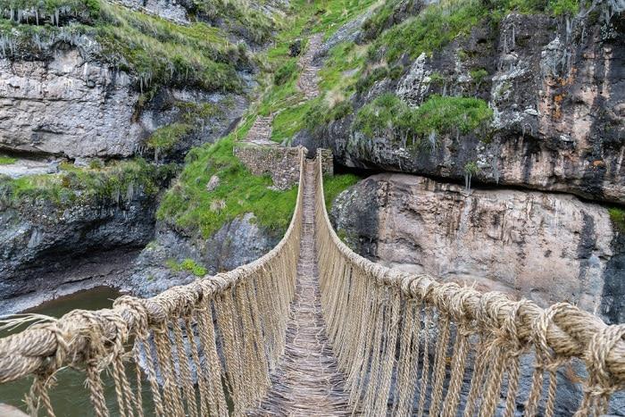 cây cầu treo bằng cỏ