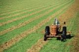 Thẩm phán dừng kế hoạch hỗ trợ nông dân dựa trên chủng tộc của chính quyền Biden