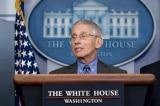 Fauci: Mỹ có nguy cơ tăng 200.000 ca COVID-19 mỗi ngày trong vài tuần tới