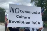 Mari Barke: Thuyết chủng tộc phê phán là Chủ nghĩa Marx gây nguy hiểm cho Hoa Kỳ