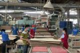 Bình Dương: Có 248 nhân viên nhiễm COVID-19, một công ty có 800 công nhân phải xin hỗ trợ