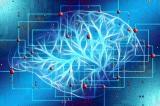 Nghiên cứu: Người nhiễm COVID-19 sau khi phục hồi bị sụt giảm trí tuệ