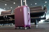 Vì sao bên trong nhiều sân bay lại được trải thảm?