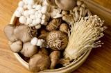 Ăn nấm giúp tăng khả năng miễn dịch, giảm nguy cơ mắc ung thư