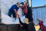 9 tỉnh, thành phố phía Nam tiếp tục nhận hơn 75.413 tấn gạo 'cứu đói'